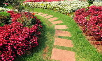 Landscaping in Albany STATE% Landscaping Services in  Albany STATE% Landscapers in  Albany STATE%